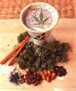 bhang or marijuana milk Ancient Marijuana History