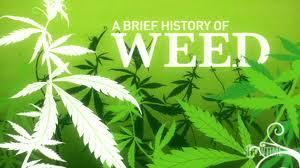Video Timeline: The History of Marijuana