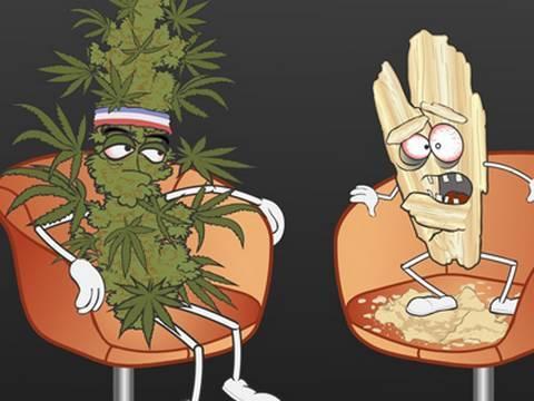 Marijuana Vs. Crystal Meth A Cool Clip