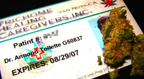 Everything You Need to Know About Getting Your Medical Marijuana Card