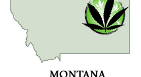 New Documentary Highlights Montana's Efforts to Repeal Medical Marijuana Law
