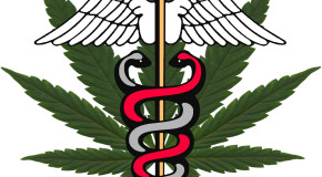 Legalize Medical Cannabis Didn't Win Big in This Election