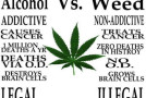 Majority of Americans Believe Pot Safer Than Alcohol
