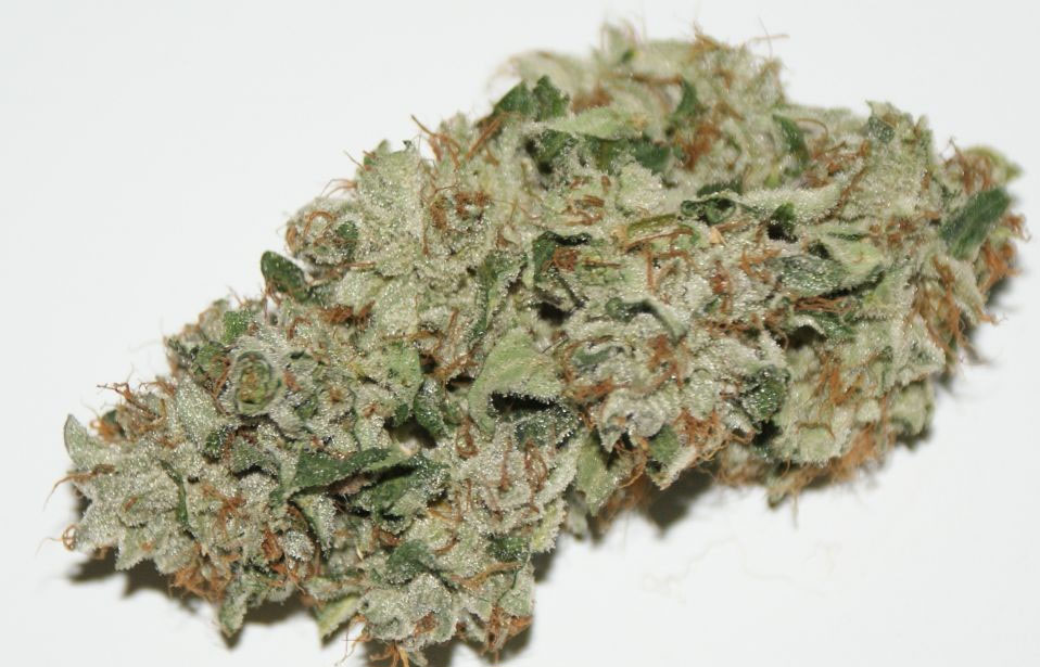 Cataract-Kush-Marijuana-Bud