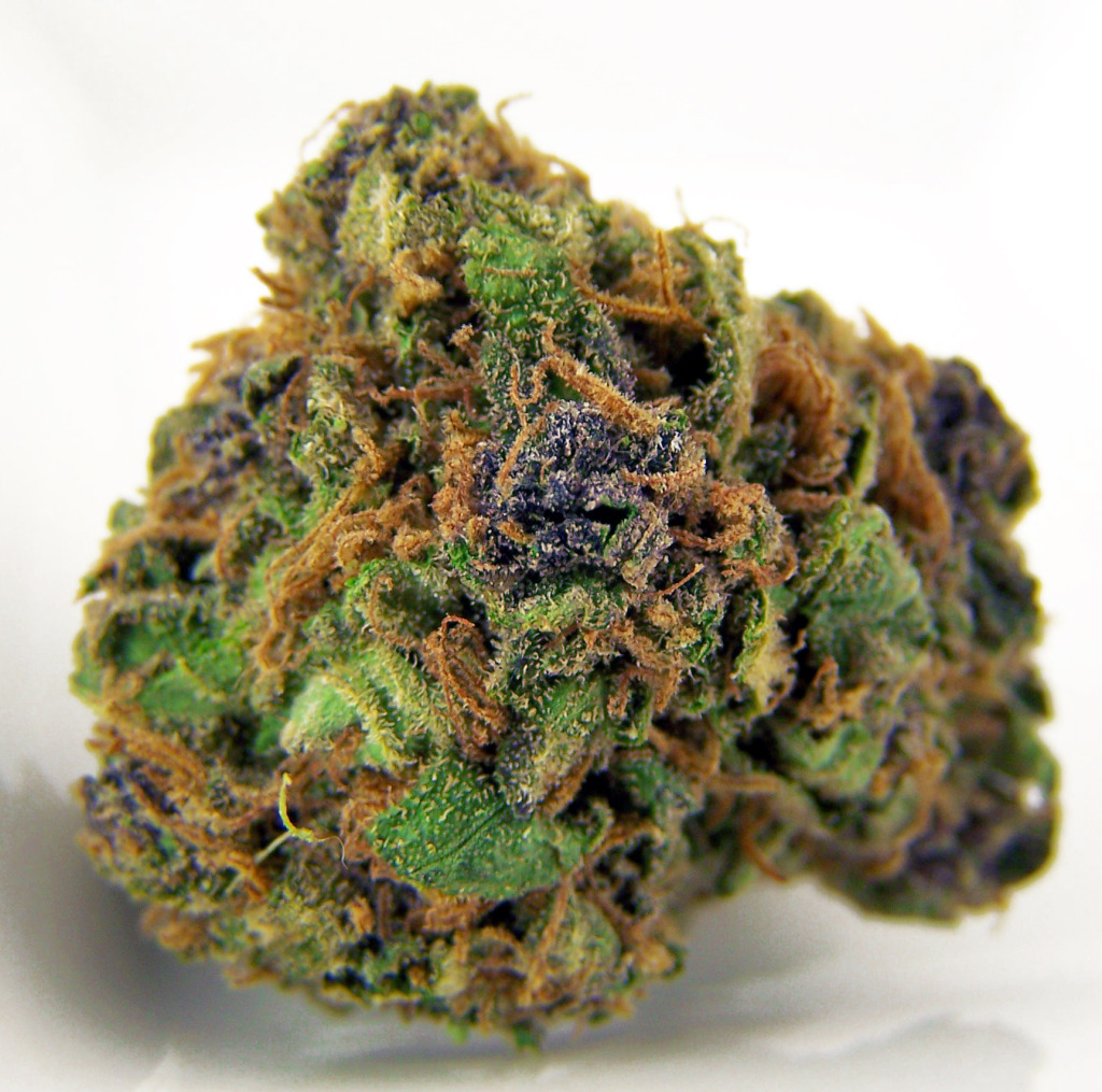 Very-Berry-Marijuana-Bud