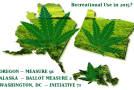 The Three States Voting on Recreational Marijuana Legalization on November 4th, 2014