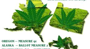 The Three States Voting on Recreational Marijuana Legalization on November 4th, 2014