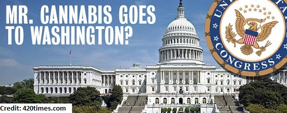 DC Weed