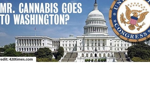 The House Introduces Legislation to Federally Legalize Cannabis