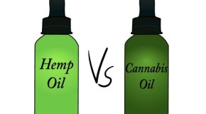 Medicinally, Hash Oil Trumps Hemp Oil