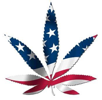 marijuana_usa