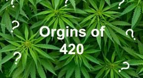 The Origins of 420