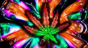 Weird Dreams After You Quit Smoking Marijuana